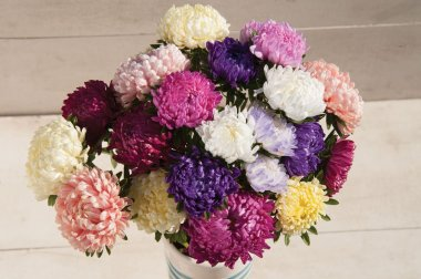 Tower Custom Mix - China Aster Seed
