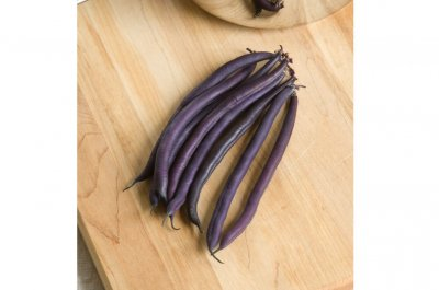 Amethyst - Purple Bush Bean Seeds