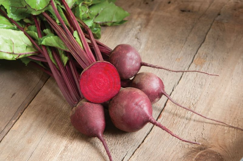 Red Ace - Organic (F1) Beet Seed