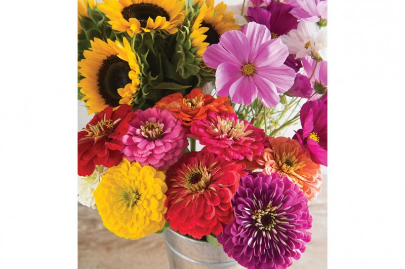 Cut Flower Kit for Market Growers - Flower Seed