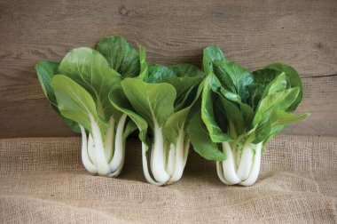 Win-Win Choi - (F1) Bok Choy Seeds