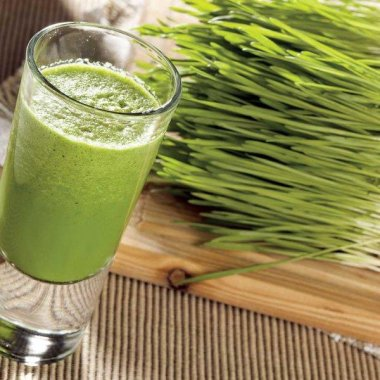 Wheatgrass Seeds