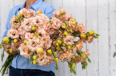 Voyage 2 Light Apricot - Pelleted (F1) Lisianthus