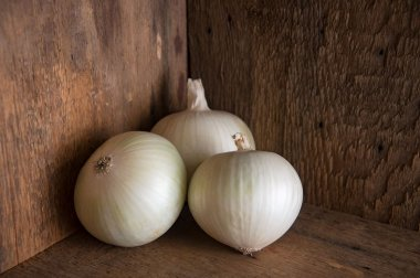 Sierra Blanca - Pelleted (F1) Onion Seed