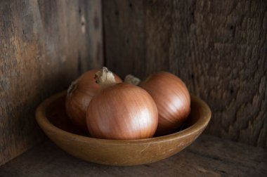 New York Early - Organic Onion Seed