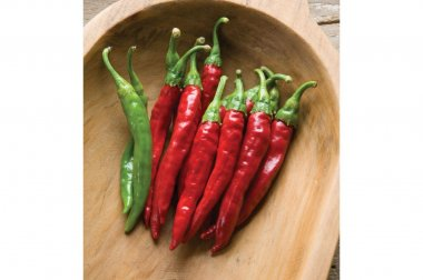Red Rocket - Organic Cayenne Pepper Seed