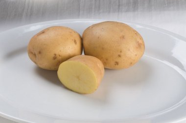Yukon Gold - Organic Seed Potatoes