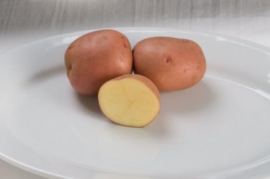 Red Gold - Seed Potatoes