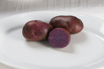 Adirondack Blue - Purple Seed Potatoes
