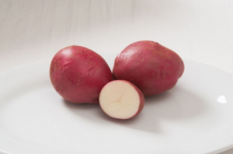 Strawberry Paw - Organic Seed Potatoes