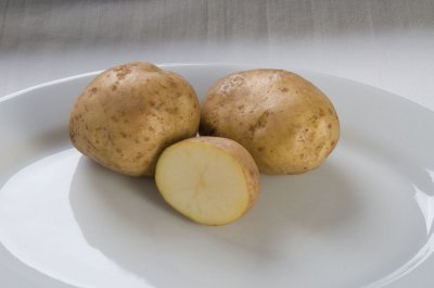 Kennebec - Organic Seed Potatoes