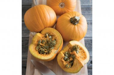 Naked Bear - Treated (F1) Pumpkin Seed