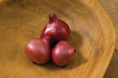Camelot - (F1) Shallot Seed