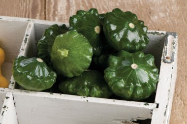 G-Star - Organic (F1) Patty Pan Squash Seed