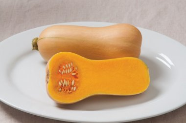 Butterscotch PMR - Butternut Squash Seeds