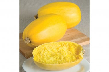 Spaghetti Squash - Vegetable Seed