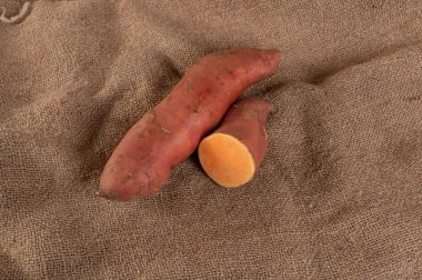 Covington - Organic Sweet Potato Slips