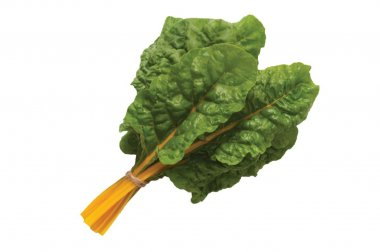 Orange Ribbed - Organic Swiss Chard Seed