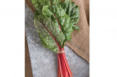 Ruby Red or Rhubarb Chard - Organic Seed