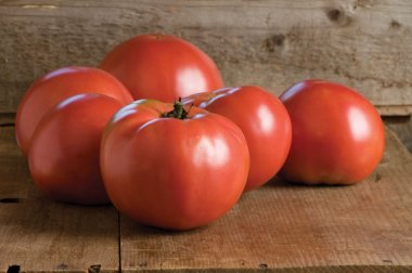Martha Washington - Organic Tomato Seed