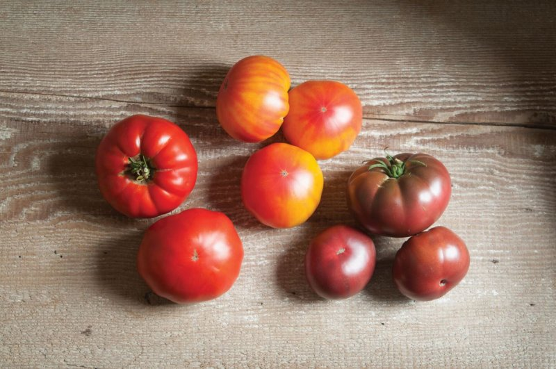 French Heritage Collection - Tomato Seed