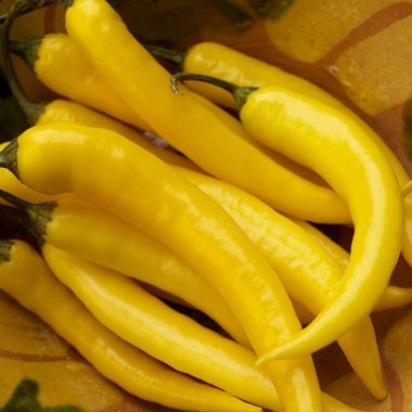 Yellow hot pepper Seeds line of organic vegetable Seeds